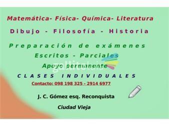 https://www.gallito.com.uy/matematica-fisica-quimica-literatura-dibujo-servicios-16365772