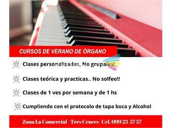https://www.gallito.com.uy/clases-particulares-de-organo-electronico-servicios-19148010