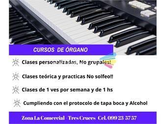 https://www.gallito.com.uy/clases-particulares-de-organo-electronico-servicios-19427102