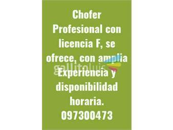 https://www.gallito.com.uy/chofer-profesional-se-ofrece-servicios-19495813
