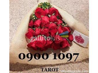https://www.gallito.com.uy/el-mejor-servicio-de-tarot-las-24-horas-0900-1097-servicios-19584600