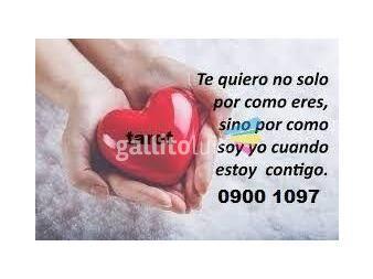 https://www.gallito.com.uy/compruebe-la-experiencia-en-tarot-las-24-horas-0900-1097-servicios-19584614
