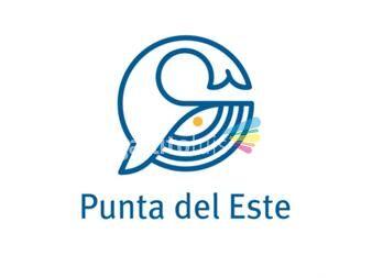 https://www.gallito.com.uy/punta-del-este-informacion-turistica-servicios-19625448
