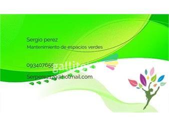 https://www.gallito.com.uy/traslado-de-mercaderia-y-pequeños-muebles-servicios-19630103