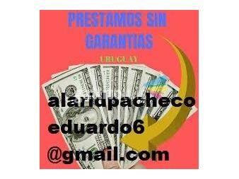 https://www.gallito.com.uy/personas-serias-y-honestas-servicios-19639333