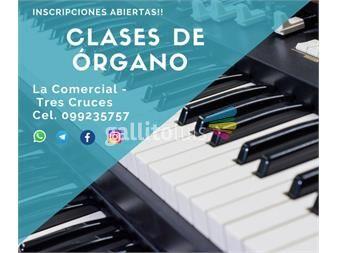 https://www.gallito.com.uy/clases-particulares-de-organo-electronico-servicios-19849275