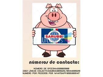 https://www.gallito.com.uy/los-mejores-chacinados-sarubbi-de-italia-a-uruguay-servicios-20040323