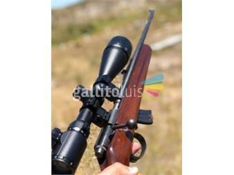 https://www.gallito.com.uy/rifle-cbc-122-productos-20129351