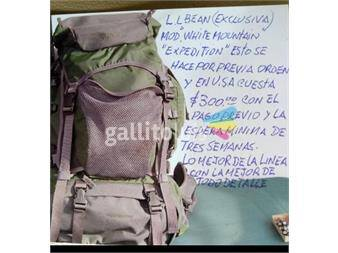 https://www.gallito.com.uy/ll-bean-white-mountain-expedition-usa-productos-20150594