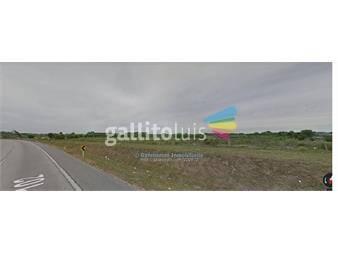 https://www.gallito.com.uy/terrenos-sobre-perimetal-102-inmuebles-13833564
