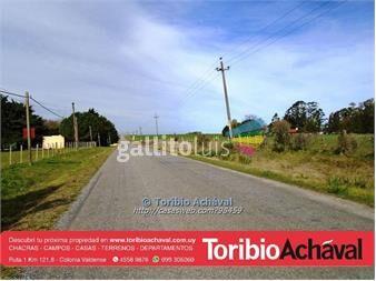 https://www.gallito.com.uy/oportunidad-chacra-de-1-hectarea-nueva-helvecia-inmuebles-13917605