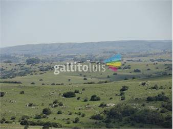 https://www.gallito.com.uy/campo-en-venta-inmuebles-12164574
