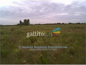 https://www.gallito.com.uy/js-terreno-casi-pando-inmuebles-14318926
