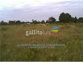 https://www.gallito.com.uy/js-terreno-casi-pando-inmuebles-14318939
