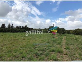 https://www.gallito.com.uy/chacra-terreno-de-10-hectareas-en-melilla-inmuebles-14201832