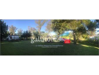 https://www.gallito.com.uy/casa-3-dormitorios-venta-inmobiliaria-calipso-inmuebles-14836849