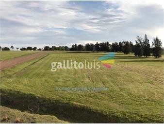 https://www.gallito.com.uy/oportunidad-en-la-tahona-2-terrenos-uss-150000-financia-inmuebles-14637972