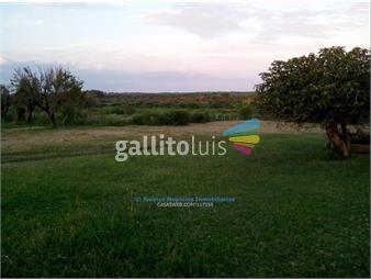 https://www.gallito.com.uy/js-terrenos-casi-las-cañas-inmuebles-15129861