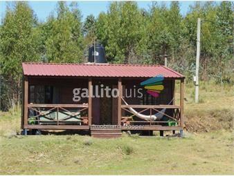 https://www.gallito.com.uy/venta-campo-60-ha-con-olivos-minas-inmuebles-13656046