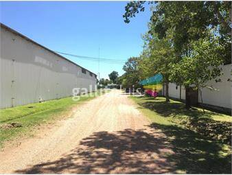 https://www.gallito.com.uy/venta-gran-local-industrial-en-paso-de-la-arena-inmuebles-19604829
