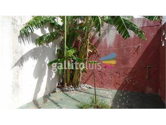 https://www.gallito.com.uy/planta-baja-inmuebles-12354723