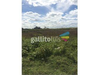 https://www.gallito.com.uy/terreno-piedras-blancas-se-escuchan-ofertas-inmuebles-12462525