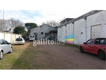 https://www.gallito.com.uy/venta-local-industrial-con-gran-area-de-deposito-en-sayago-inmuebles-12845029