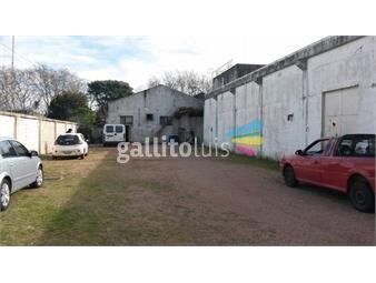 https://www.gallito.com.uy/venta-local-industrial-con-gran-area-de-deposito-en-sayago-inmuebles-12845029