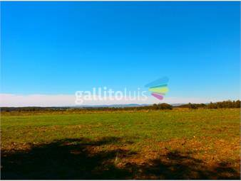 https://www.gallito.com.uy/inmobiliaria-gorga-lider-en-negocios-inmobiliarios-inmuebles-12859255