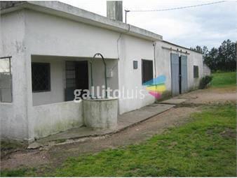 https://www.gallito.com.uy/chacra-6-has-agricola-casa-2-dorm-y-galpon-inmuebles-12977374