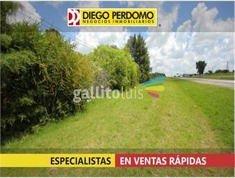 https://www.gallito.com.uy/chacra-en-venta-90000m²-punta-de-valdez-inmuebles-13124590