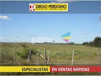 https://www.gallito.com.uy/chacra-en-venta-43-has-localidad-de-libertad-inmuebles-13129727