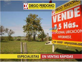 https://www.gallito.com.uy/chacra-en-venta-7-has-colonia-inmuebles-13133593