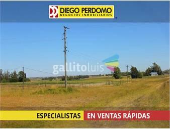 https://www.gallito.com.uy/lote-de-8-has-en-venta-ruta-n-1-san-jose-inmuebles-13133620