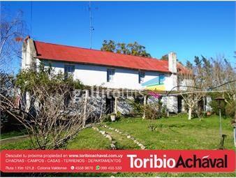https://www.gallito.com.uy/campo-en-nueva-helvecia-pegado-a-planta-urbana-inmuebles-12767264