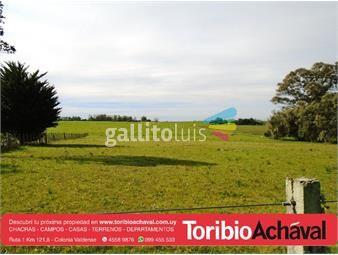 https://www.gallito.com.uy/oportunidad-unica-en-venta-en-la-zona-inmuebles-12858673