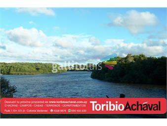 https://www.gallito.com.uy/3600-metros-de-costa-al-rio-rosario-importante-casco-inmuebles-12929133