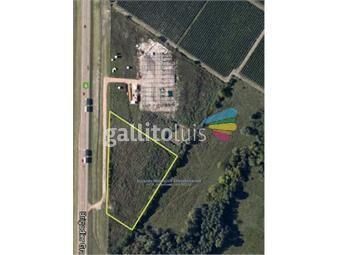 https://www.gallito.com.uy/js-gran-terreno-de-9000-m2-sobre-ruta-5-inmuebles-13044883