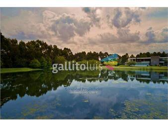 https://www.gallito.com.uy/terrenos-en-san-nicolas-inmuebles-16114808