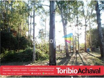 https://www.gallito.com.uy/excelente-terreno-a-180-metros-de-ruta-1-inmuebles-13380685