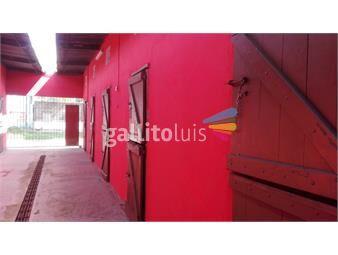 https://www.gallito.com.uy/divina-casa-y-stud-para-11-caballos-a-50-metros-del-hipodro-inmuebles-13498962