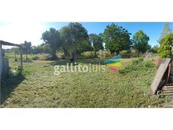 https://www.gallito.com.uy/terreno-en-alquiler-empresas-prox-instrucciones-y-belloni-inmuebles-13610219