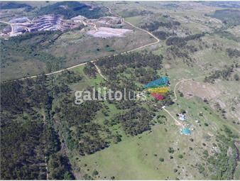 https://www.gallito.com.uy/minas-490-has-con-200-has-forestadas-excelente-punto-inmuebles-13818112