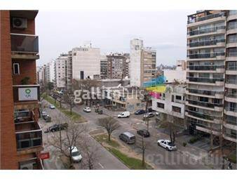 https://www.gallito.com.uy/5-dorm-panoramico-impecable-280-m2-inmuebles-13823561