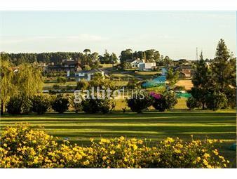 https://www.gallito.com.uy/suc-shangrila-colinas-de-carrasco-el-lugar-que-buscabas-inmuebles-14130135