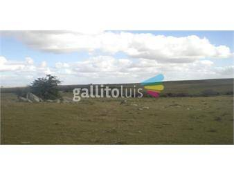 https://www.gallito.com.uy/campo-en-florida-ref-1675-inmuebles-14225091