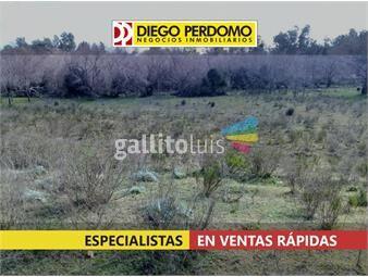 https://www.gallito.com.uy/terreno-de-5930m²-en-venta-montevideo-inmuebles-14245313