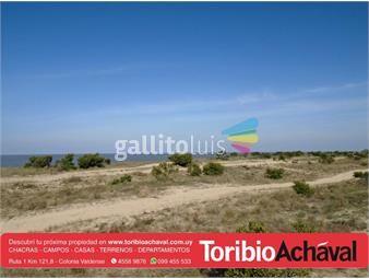 https://www.gallito.com.uy/excelente-bajada-directa-al-rio-hermosas-vistas-inmuebles-14282963