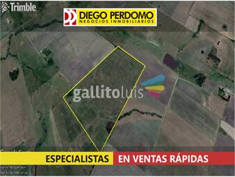 https://www.gallito.com.uy/chacra-de-20-has-en-venta-san-jose-inmuebles-14294768