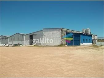 https://www.gallito.com.uy/iza-venta-local-industrial-inmuebles-14319277